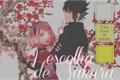História: A escolha de Sakura