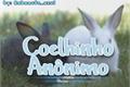 História: Coelhinho Anônimo