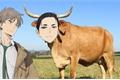 História: Kambe friboi, a daiharu fanfic