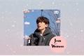 História: He's so needy - Jeon Wonwoo