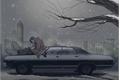 História: Cold winter night (Destiel)