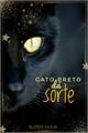 História: Gato preto dá sorte