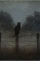História: I see ghosts! -minsung