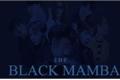 História: BLACK MAMBA - BTS Yandere!