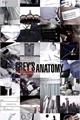 História: Imagines Grey's Anatomy - Fanboy