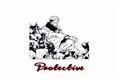 História: Protective - Imagine Ryomen Sukuna