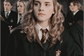 História: Imagine Hermione