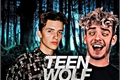História: Teen Wolf