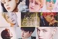 História: Secret Garden ABO ( Bts, Nct, Exo)