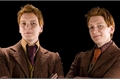 História: Shades of Weasley - Fred & George Weasley