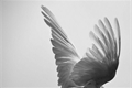História: My Angel — Michael Langdon