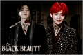 História: Black Beauty