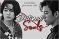 História: Destined Souls
