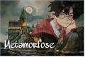 História: Harry Potter - Metamorfose - Harmione