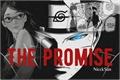 História: The Promise: BORUSARA