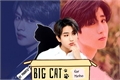 História: Big Cat - MinSung