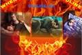 História: When fire meets gasoline - Sterek