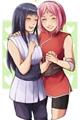 História: Amor Selvagem (SakuHina)