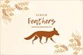História: Feathers