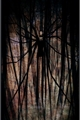 História: Damirae - a lenda do Slender Man