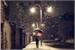 Fanfic / Fanfiction Loving the Rain