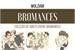 Fanfic / Fanfiction Bromances (One Direction)