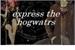 Fanfic / Fanfiction Express the Hogwarts