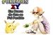 Fanfic / Fanfiction Pokémon XY - Em Busca Do Que Se Foi Perdido
