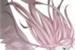 Lista de leitura NaruSaku A
