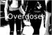 Fanfic / Fanfiction Overdose (Camren)