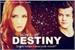 Fanfic / Fanfiction Work of destiny