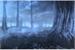Fanfic / Fanfiction Fic Interativa: Colégio Amaldiçoado dos Animes Dark Woods