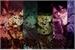 Fanfic / Fanfiction Vampire Lovers Yaoi (Interativa)