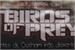 Fanfic / Fanfiction Birds of Prey