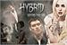 Fanfic / Fanfiction Hybrid: Beyond The Veil