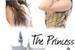 Fanfic / Fanfiction The Princess