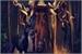 Fanfic / Fanfiction Jacob Claymore e A Deusa Acorrentada