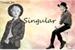 Fanfic / Fanfiction Singular