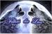 Fanfic / Fanfiction Filhas da Lua
