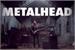 Fanfic / Fanfiction MetalHead