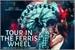 Fanfic / Fanfiction Tour in the ferris wheel