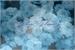 Fanfic / Fanfiction Blue Flowers ☆ Kenxy ☆