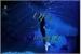 Fanfic / Fanfiction Secretos of a Mermaid Life