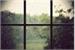 Fanfic / Fanfiction Windows