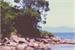 Fanfic / Fanfiction A Ilha (Interativa)