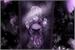 Fanfic / Fanfiction Espelho Sujo