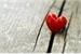 Fanfic / Fanfiction Um Amor Escondido