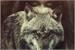Fanfic / Fanfiction A loba e o caçador
