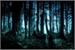 Fanfic / Fanfiction Os Mistérios de Lightfield- Interativa