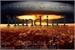 Fanfic / Fanfiction Quinta Guerra Mundial - A Revolução... (INTERATIVA)